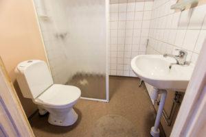 Badrum med dusch och wc.